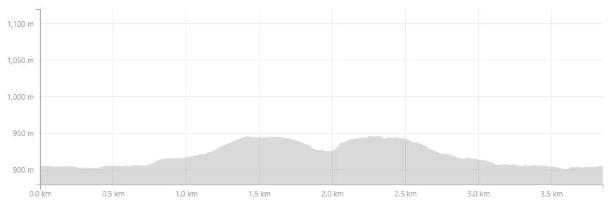 shiralee-4km